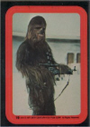 19 The Wookiee Chewbacca.jpg (17294 bytes)