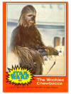 101 The Wookiee Chewbacca.jpg (35026 bytes)