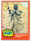 107 The Tusken Raider.jpg (37978 bytes)