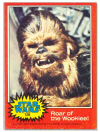 128 Roar of the Wookiee.jpg (40388 bytes)